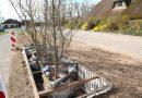 Tien boomveren langs het Fietspad van de Toekomst